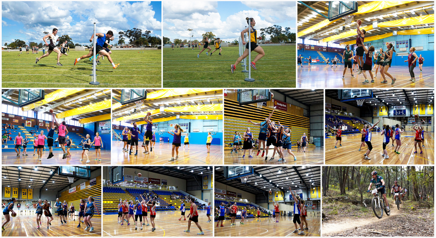 Sports Photography Collage 10