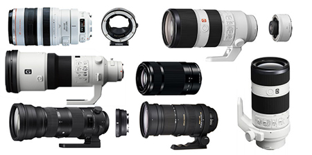How to do Sports Photography Sony Zoom Lenses